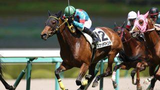 【京都牝馬SG3】スナッチマインド有終の美飾れず3着!子供たちに夢託す。