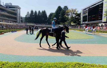 パラダイスリーフ 新緑賞(500万)
