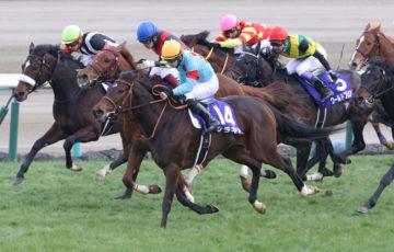 サラキア有馬記念